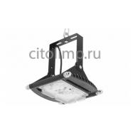 Уличный светодиодный светильник ДСП 29-40-003, 38Вт.,  4180Лм.,  IP67
